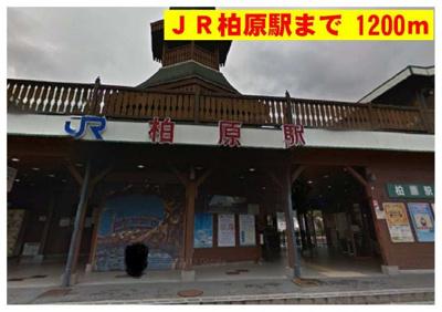 JR柏原駅まで1200m