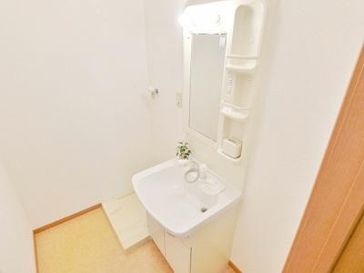 独立洗面所(シャンプードレッサー・洗濯置き場)