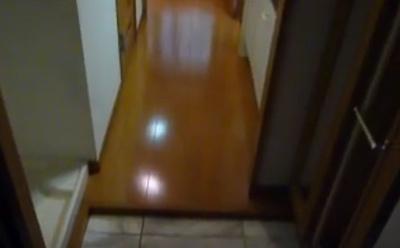 シューズボックス付き玄関。