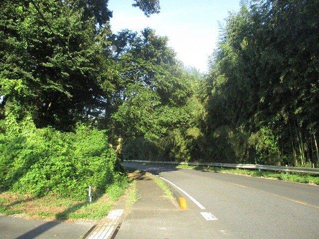【前面道路含む現地写真】加倉井町土地