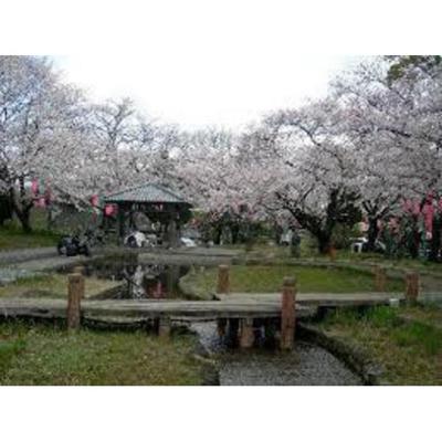 公園「春日町さつき緑地まで1012m」