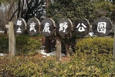 武蔵野公園まで100m