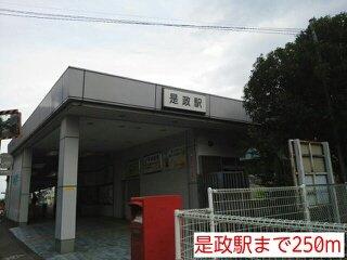 是政駅まで250m