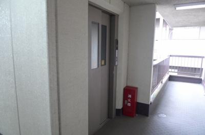 パーク・ハイツ桃井