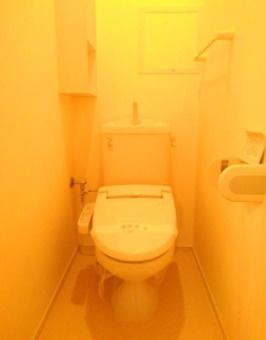 【トイレ】アルバテラス