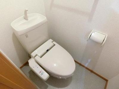 【トイレ】クロス マウンテン