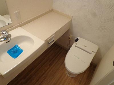 【洗面所】アクセスメゾン神戸