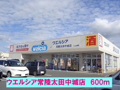 ウエルシア常陸太田中城店まで600m