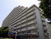イトーピア東大島マンションの画像