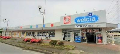 ウエルシア毛呂本郷店まで1100m