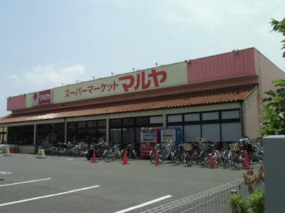 マルヤ南流山店