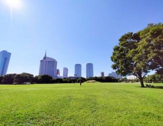 《千葉県立海浜幕張公園》季節ごとに美しいい風景が楽しめる公園。子供の遊び場、散歩コースに。