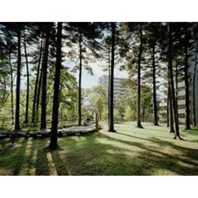 公園「日野緑地まで536m」
