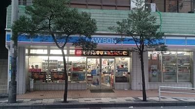 ローソン那覇松山店まで250m
