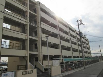 【外観】池島町住宅B棟