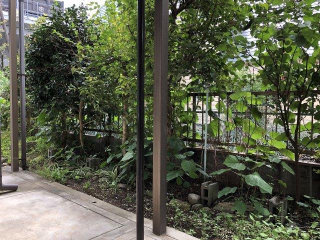 【庭】◇◆小田原市蓮正寺 日本庭園・池のある中古戸建◆◇