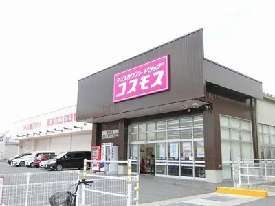 コスモス長松店まで1100m
