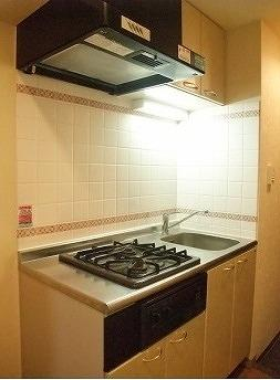 料理が好きな方におすすめの「2口ガスシステムキッチン」