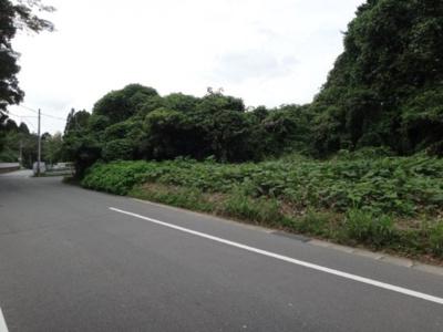 南東側より撮影 前面道路を含む外観です