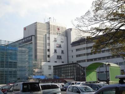 武蔵野赤十字病院まで793m