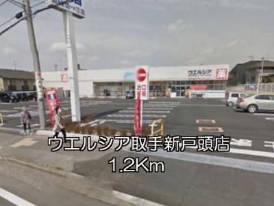 【周辺】フェレスカーレ 戸頭