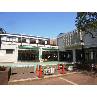 図書館「世田谷区立桜丘図書館まで530m」