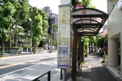 渋51 バス停