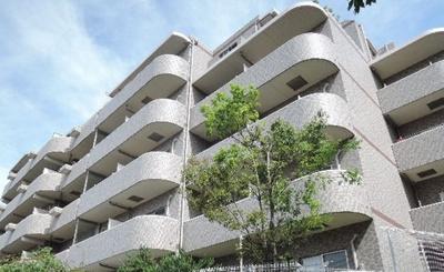 「鉄筋コンクリート造5階建のマンションです」