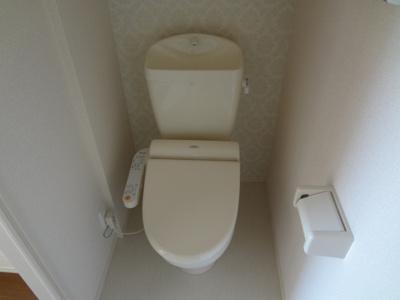 【トイレ】トレフルブランC