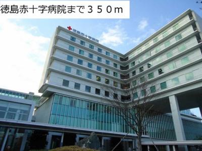 徳島赤十字病院まで350m