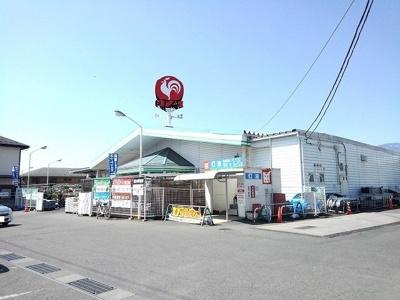 コメリ敷島店まで1300m