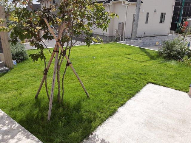 【庭】●仲介手数料 割引物件です● 中古戸建(新築未入居住宅) 緑が丘西7丁目 開放感あるリビング、大空間が自慢です!