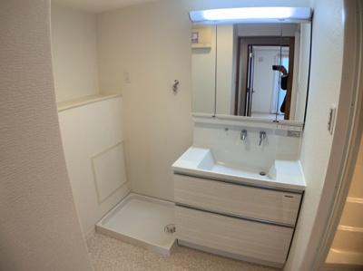 独立洗面台、朝の身支度には欠かせません。洗濯機置き場も室内です。
