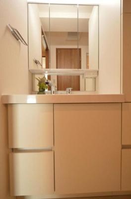 ライオンズステーションプラザ西台403号室の独立洗面台です