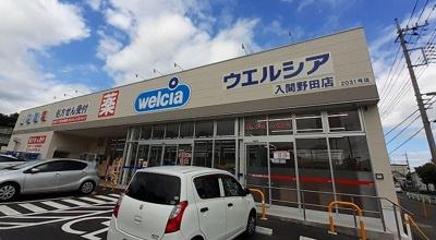 ウエルシア入間野田店まで250m