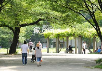 アヴァンツァーレ新宿ピアチューレ
