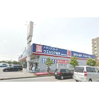 ドラックストア「ウエルシア宇都宮平松本町店まで727m」