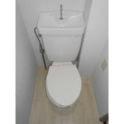 【トイレ】グレープ・パル