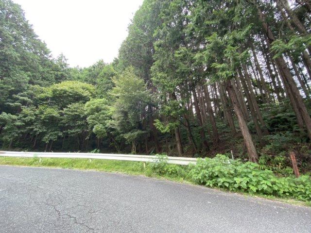 南側道路から西面