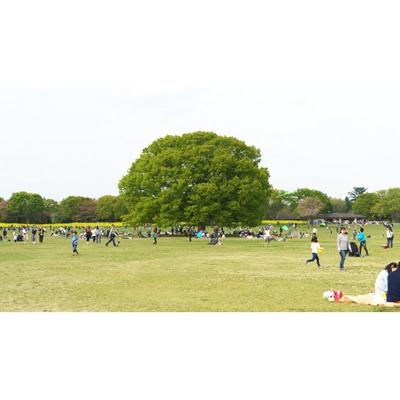 公園「国営昭和記念公園まで1143m」