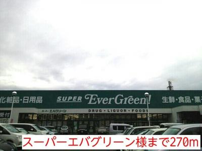 スーパーエバグリーン様まで270m