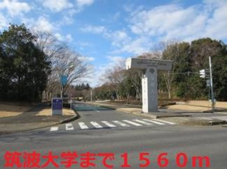 筑波大学まで1560m