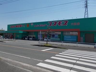 コスモス六田店まで1100m