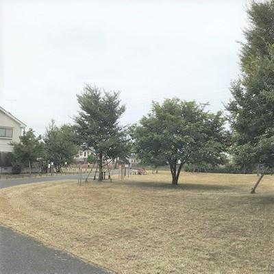 北側、緑地公園