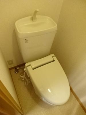 【トイレ】ストロベリーカーサⅡ