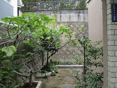 【庭】企救丘六丁目10番17号