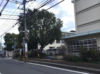 宮竹小学校 0.3km