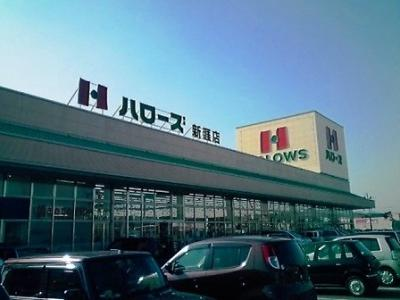 ハローズ新涯店まで1100m