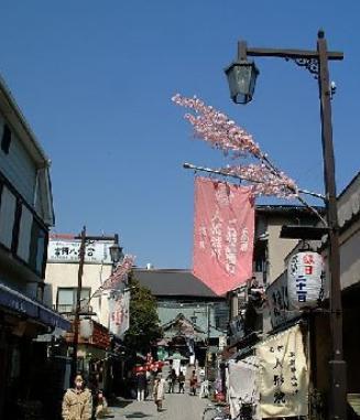【周辺】BEL FIORE MONNAKA(ベルフィオーレ門前仲町)