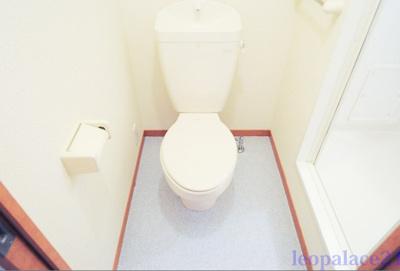 【トイレ】椎の実2